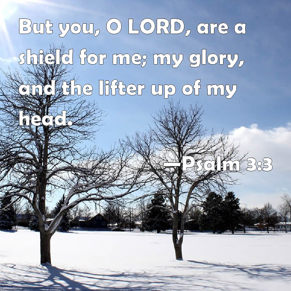 Psalm 3:3 But you, O LORD, are a shield for me