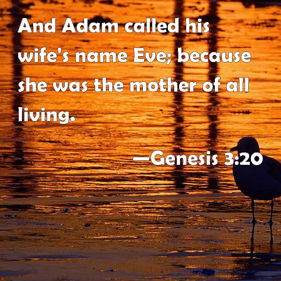 Genesis 3:20 And Adam called his wife's name Eve; because she was the  mother of all living.