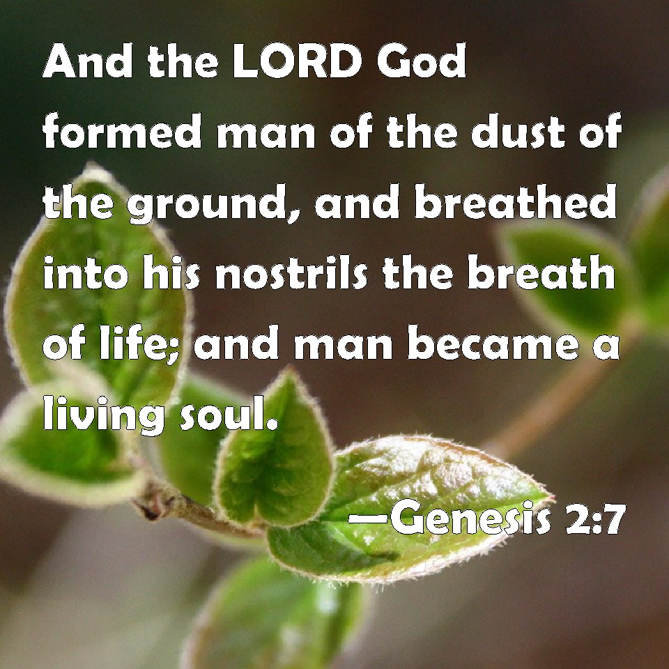 Genesis 2:7 And the LORD God formed man of the dust of the ...