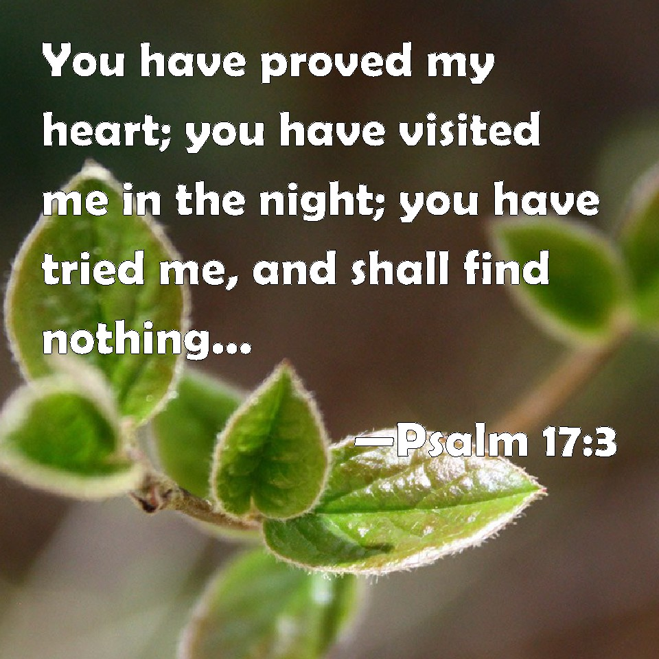 Psalm 17:3 You have proved my heart; you have visited me in the ...