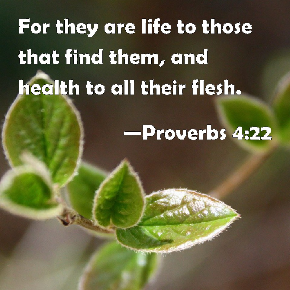 Proverbs 4:22 For they are life to those that find them, and health