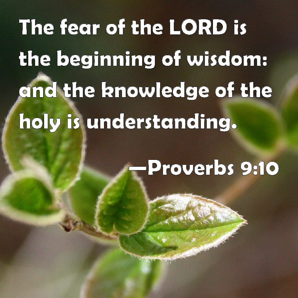 fear of the lord is the Without the fear of the lord, we may gain knowledge of earthly things and make some practical choices for this life, but we are missing the one ingredient that defines a wise person (psalm 14:1 exodus 20:3 34:14 jeremiah 25:6 matthew 22:37.
