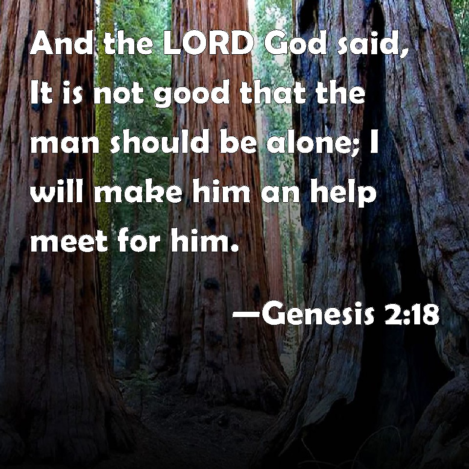 Genesis 2:18 And the LORD God said, It is not good that the