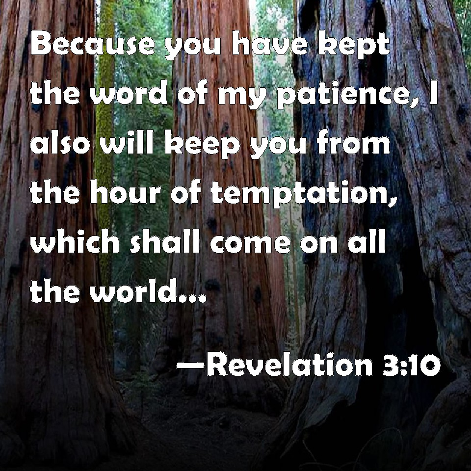 Revelation 310 because you have kept the word of my patience i revelation 310 because you have kept the word of my patience i also will keep you from the hour of temptation which shall come on all the world altavistaventures Gallery