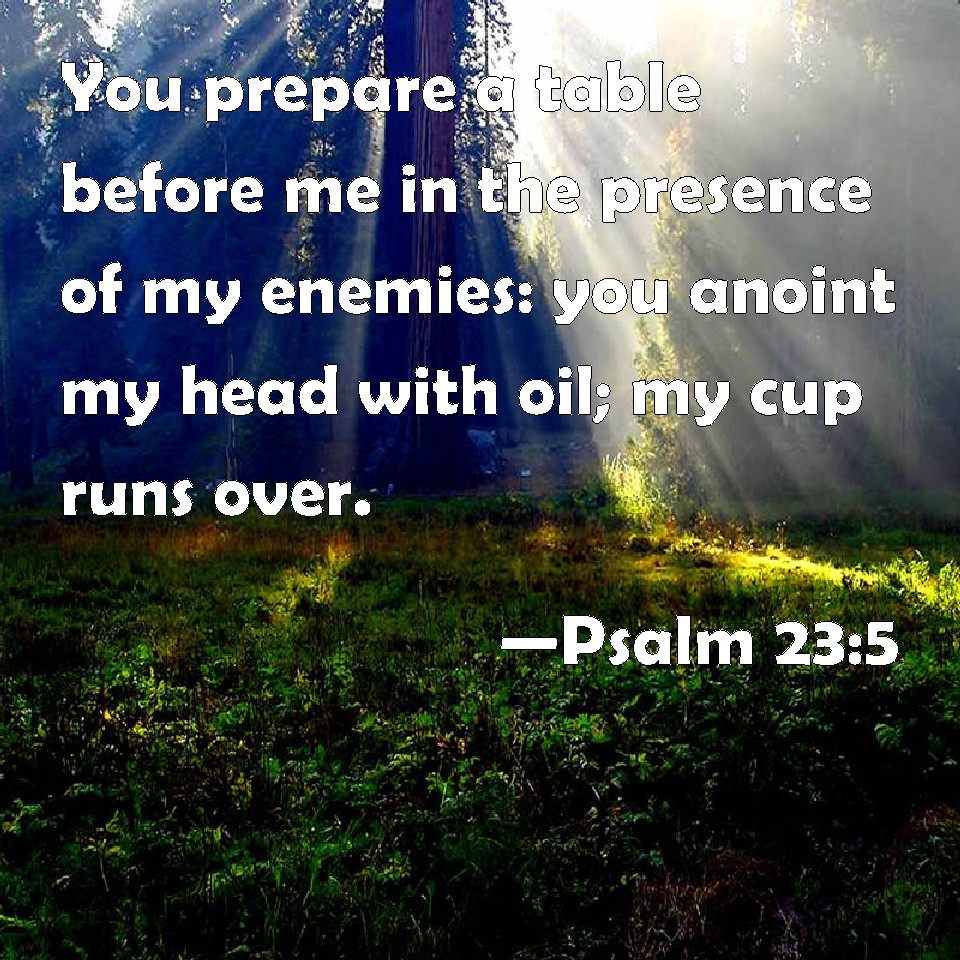 Psalm 23 5 You Prepare A Table Before Me In The Presence Of