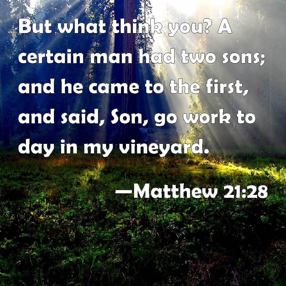 Matthew 21:28 But what think you? A certain man had two sons; and he came  to the first, and said, Son, go work to day in my vineyard.