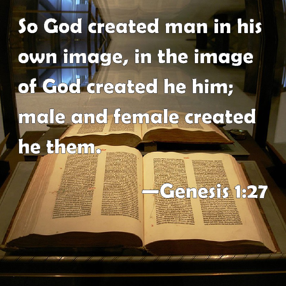 the image of god in man pdf