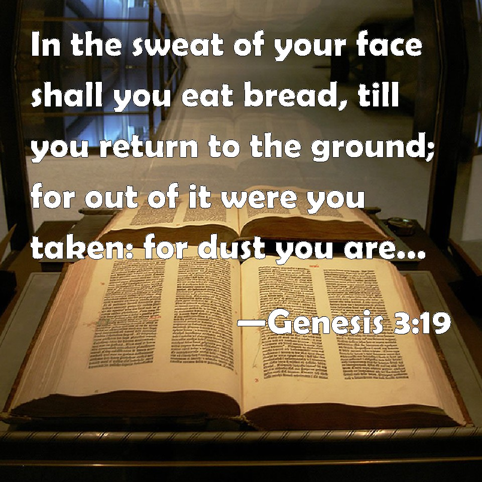 Genesis 3:19 In the sweat of your face shall you eat bread, till ...