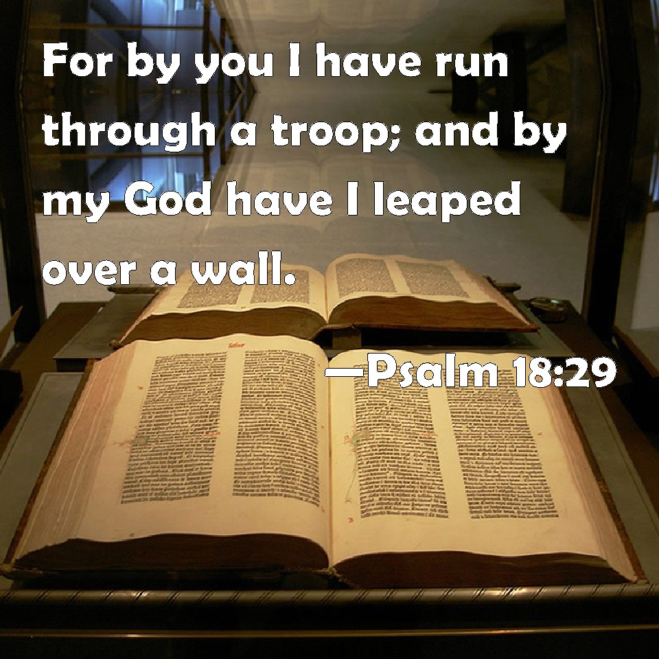 Image result for You run through troops KJV