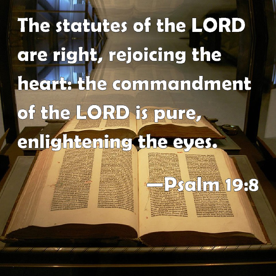 Image result for Psalms 19:8