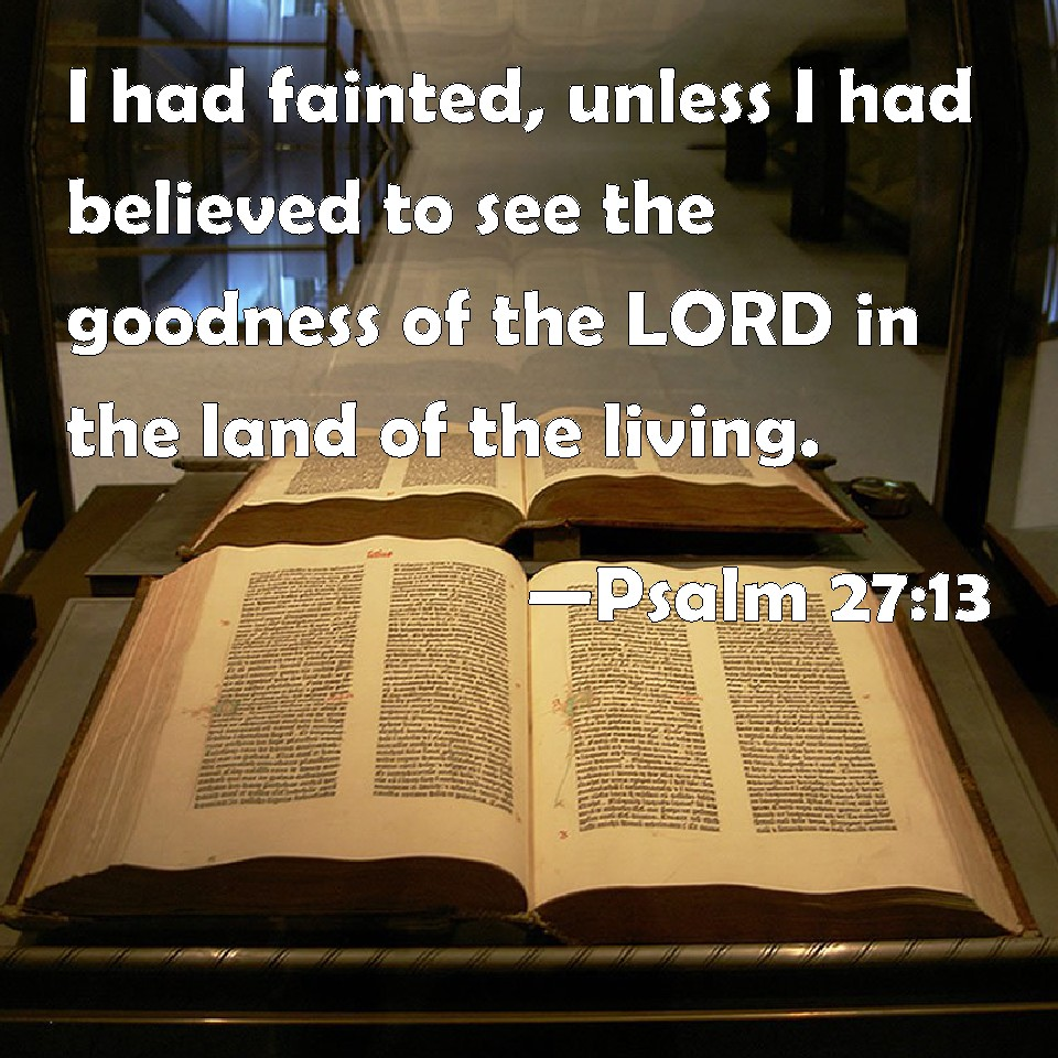 ... believed to see the goodness of the LORD in the land of the living