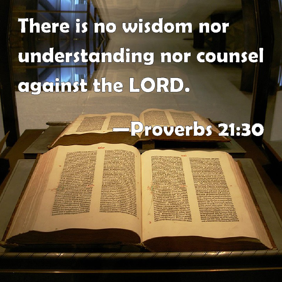 Proverbs 21:30 There is no wisdom nor understanding nor
