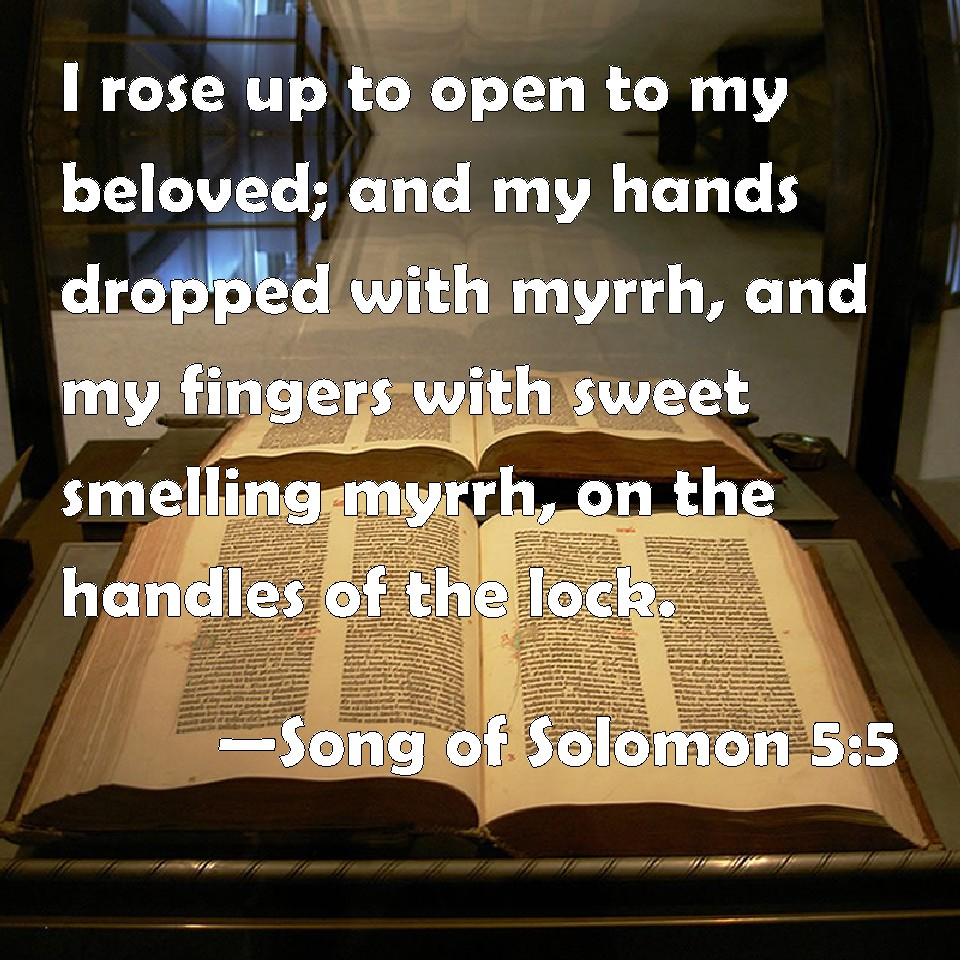 Dripped with myrrh bible song of solomon 55