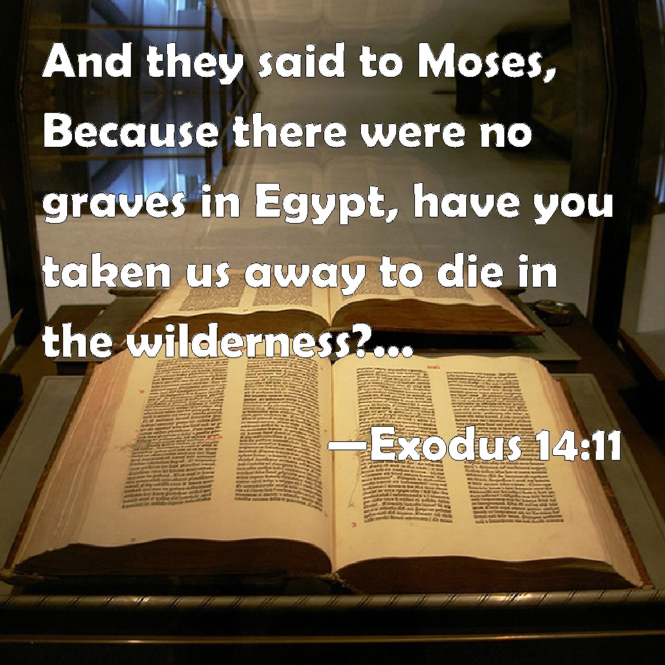 Exodus 14:11 And they said to Moses, Because there were no graves in Egypt, have you taken us away to die in the wilderness? why have you dealt thus with us, to