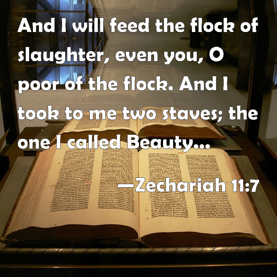 Image result for the flock of the slaughter in the bible