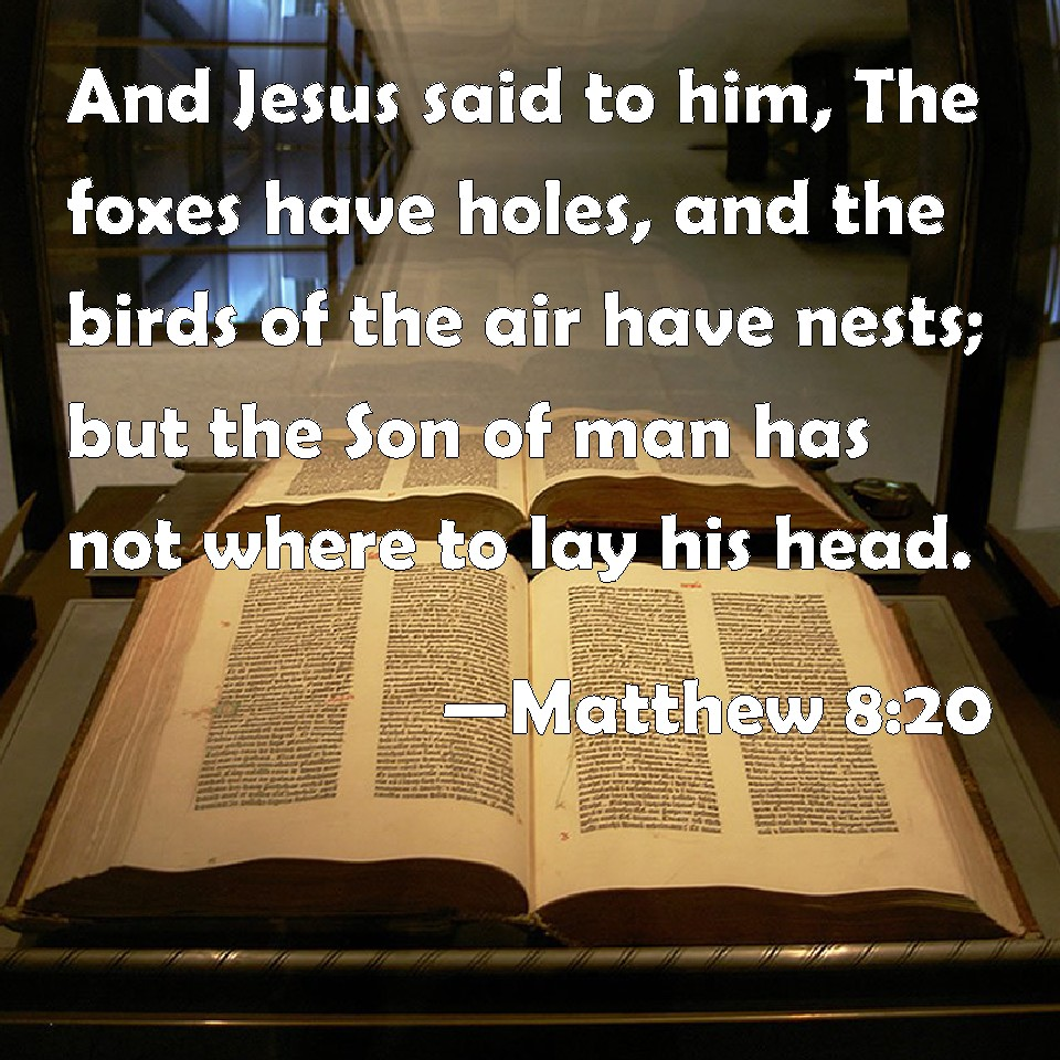 Image result for pictures of 'Foxes have holes and birds of the air have nests, but the Son of Man has nowhere to lay His head.'