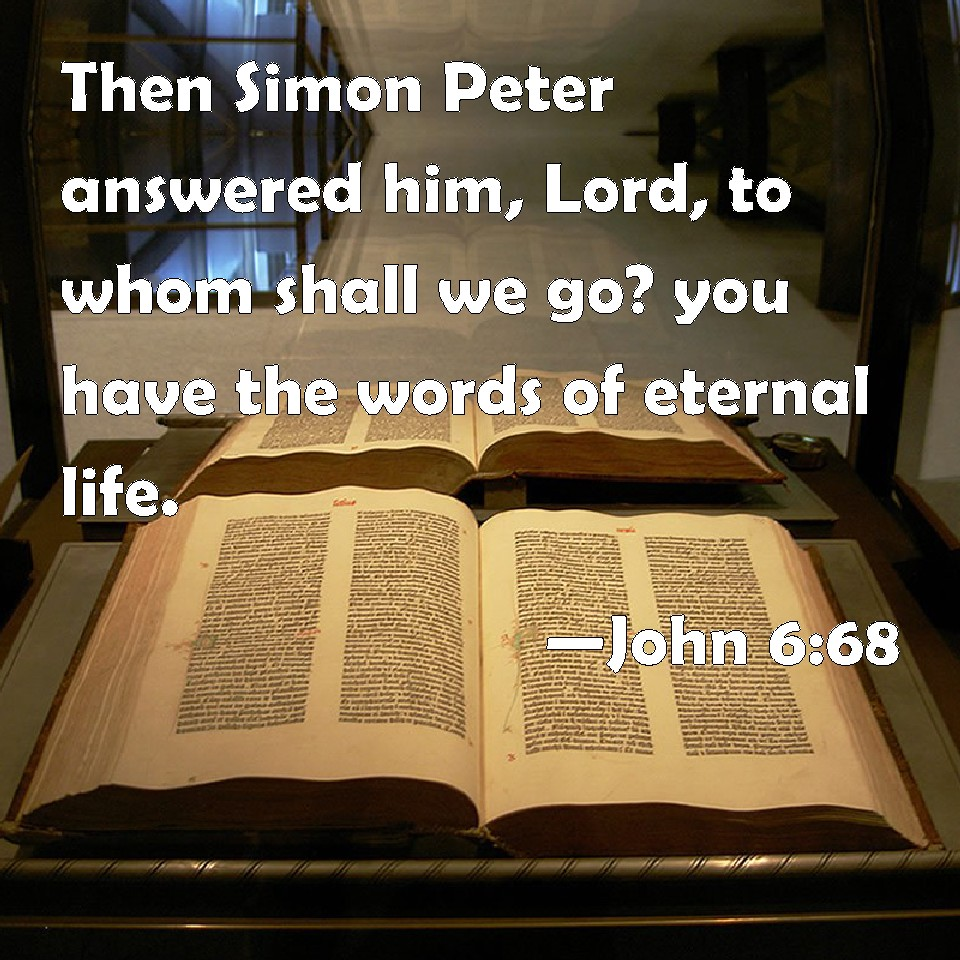 John 6:68 Then Simon Peter answered him, Lord, to whom shall we go ...