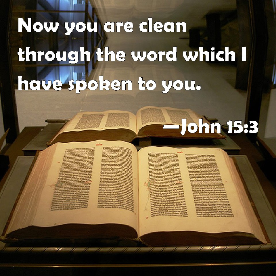 Image result for ye are clean through the word
