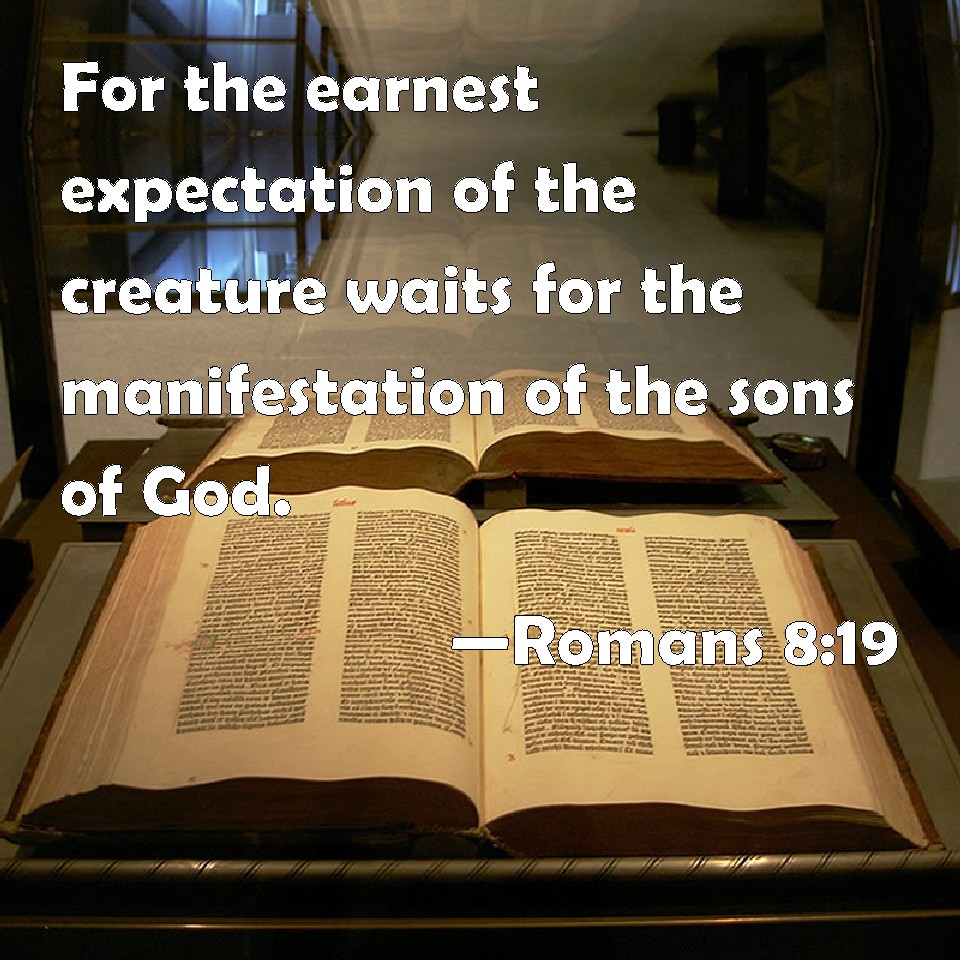 Romans 8:19 For the earnest expectation of the creature